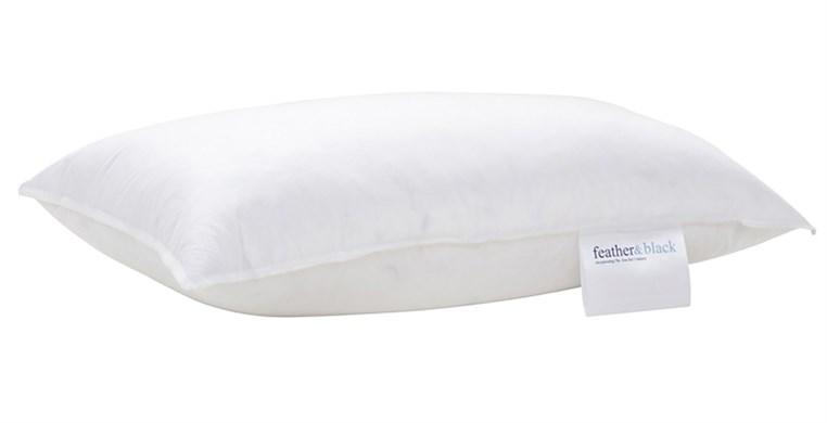 50cm x 30cm Cushion Pad
