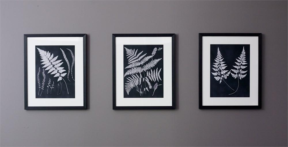 Norah Fern Print